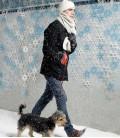 Cortina, divisor de ambientes, decoración de pared - Joyn Copo de nieve